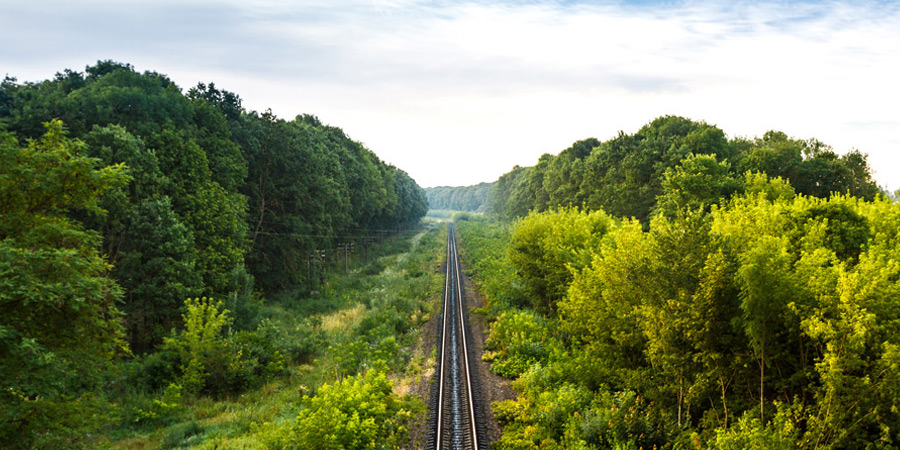 railroad vegetation management