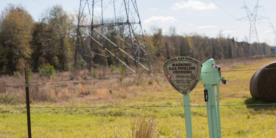 pipeline vegetation management
